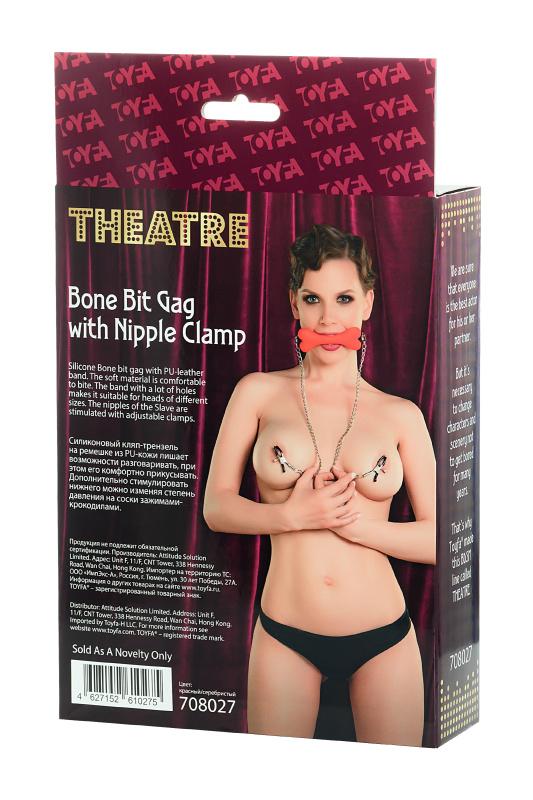 Кляп-трензель TOYFA Theatre, в виде косточки с зажимами для сосков,красный